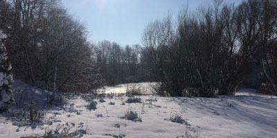 Osiedle Stara Cegielnia Gliwice - Otoczenie (3)